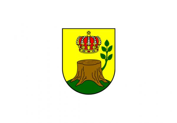 Caglin Kommune